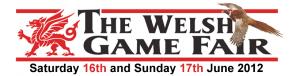 Dingle Fingle Welsh Game Fair 2012 logo